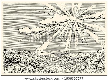 sun and light sketch Stock photo © prill