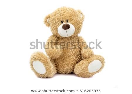 Teddy vintage orsacchiotto giocattolo seduta bianco Foto d'archivio © Stocksnapper