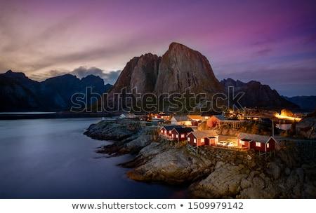 Manzara Norveç su ağaç deniz Stok fotoğraf © gewoldi
