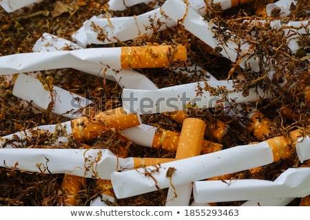 crumpled cigarette stock photo © deyangeorgiev