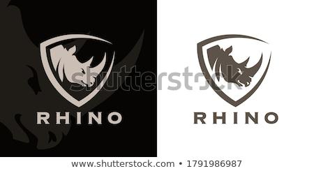 Rhino Stock photo © chris2766