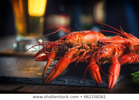 beer and crayfish close-up Stock photo © OleksandrO