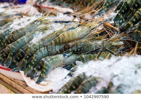 Fresh prawn shrimp on the market  Stock photo © stoonn