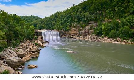 schilderachtig · zuidelijk · Kentucky · voorjaar · water - stockfoto © alexeys