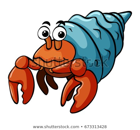 Hermit crab with happy face Stock photo © bluering