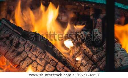 closeup big log fire stock photo © romvo