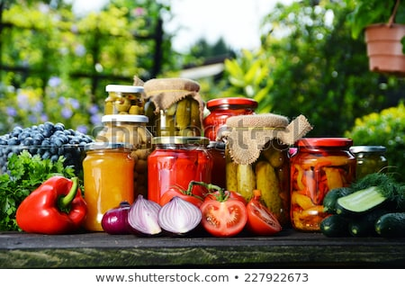 Vegetable garden with homemade vegetables stock photo © Klinker