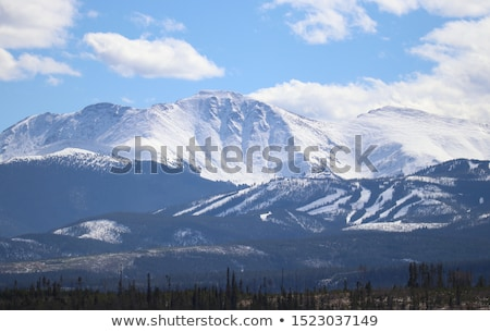 Winter park dag zon sneeuw Stockfoto © stefanoventuri