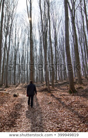 Man walking through sunlit forest scene Stock photo © IS2
