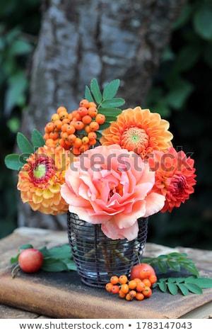 バラ · 花瓶 · ギフト · 赤いバラ · 愛 · 緑 - ストックフォト © melnyk