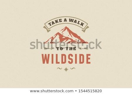 Doopvont ontwerp wereld rotsklimmen illustratie sport Stockfoto © colematt