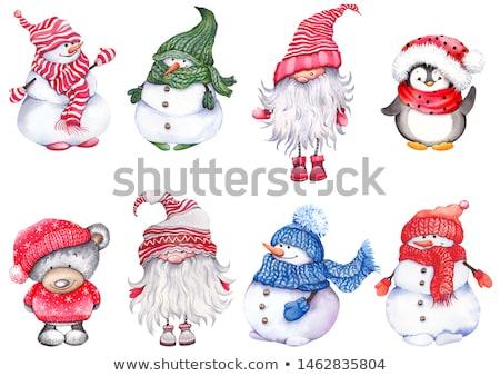 Penguen eşarp hediye Noel yılbaşı eldiveni Stok fotoğraf © robuart