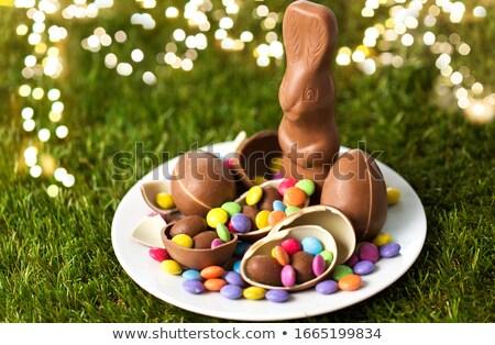 チョコレート バニー 卵 キャンディ 値下がり 草 ストックフォト © dolgachov