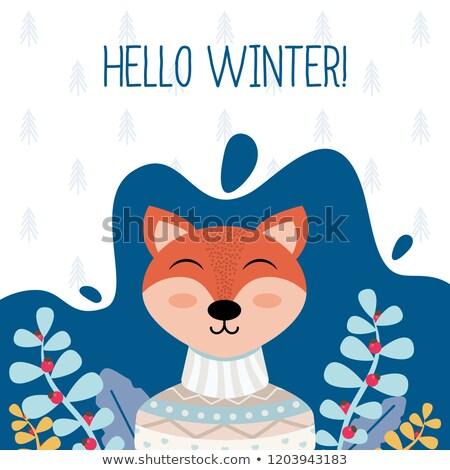 Hallo winter cute dier vos konijn Stockfoto © robuart