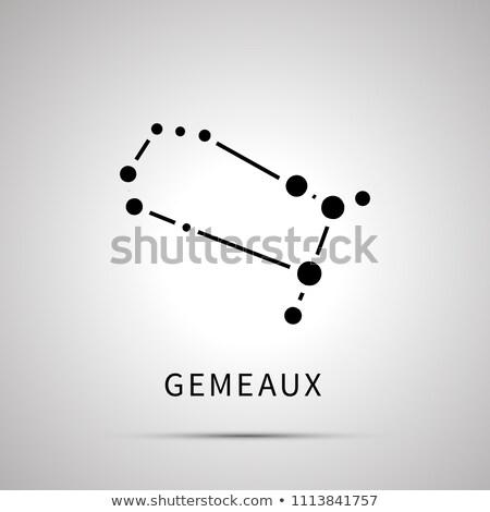 Sterrenbeeld eenvoudige zwarte icon schaduw grijs Stockfoto © evgeny89