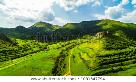 Coltesti fortress Stock photo © RazvanPhotography