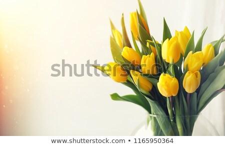 vidrio · jarrón · tulipanes · ramo · aislado - foto stock © ivonnewierink