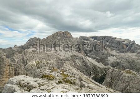overgrown mountain peak Stock photo © prill