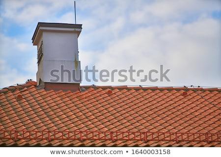 métallique · cheminée · bois · façade · belle · météorologiques - photo stock © zittto