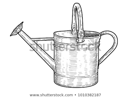 Flowers in Watering Can - Vintage Stock photo © frannyanne