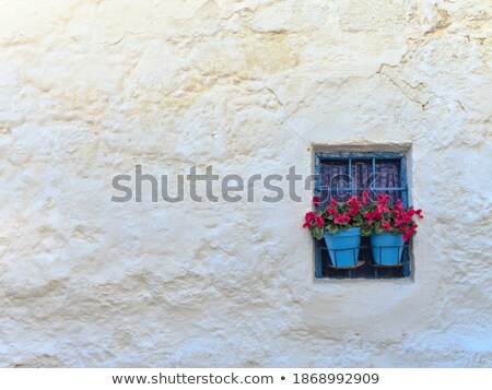 Azul flores vermelhas branco parede vintage lan Foto stock © Taiga