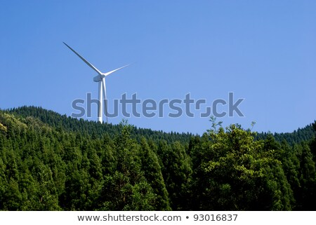 Wind power generator in the coniferous forest  Stock photo © meinzahn