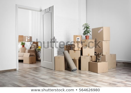 Sofa and cardboard boxes in new home stock photo © HASLOO