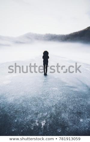 Bevroren wal natuur licht zee sneeuw Stockfoto © olandsfokus
