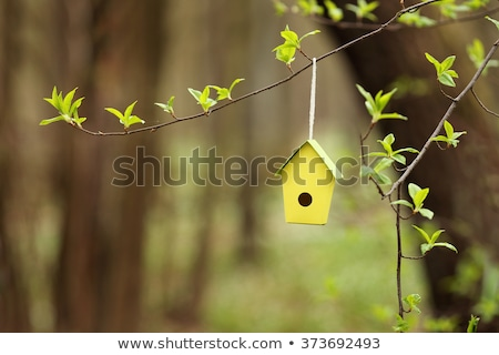 birdhouse for Easter Stock photo © adrenalina