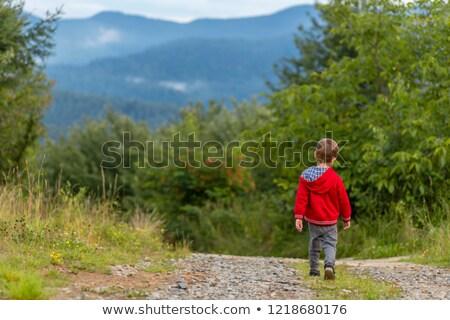 Little boy walking away on a path  Stock photo © fanfo