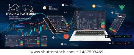 pénz · valuta · csere · vektor · bitcoin · dollár - stock fotó © netkov1