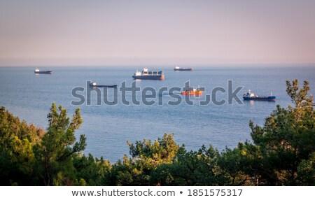 Enormous Tanker Ship on the Horizon at Sunset Stock photo © pzaxe
