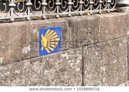 Saint James way shell on ceramic tile Stock photo © lunamarina