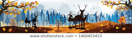 Stock photo: Scene with mountain and field