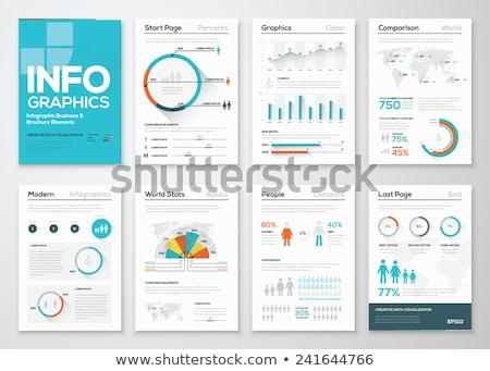 An infochart with statistics Stock photo © bluering
