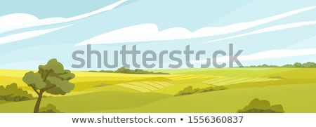 vieux · chêne · vert · prairie · ciel · nuages - photo stock © simply
