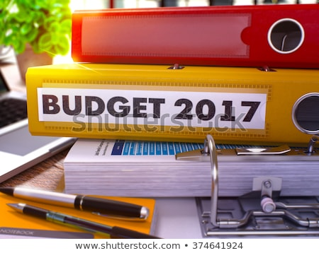 Orçamento escritório turva imagem 3D negócio Foto stock © tashatuvango