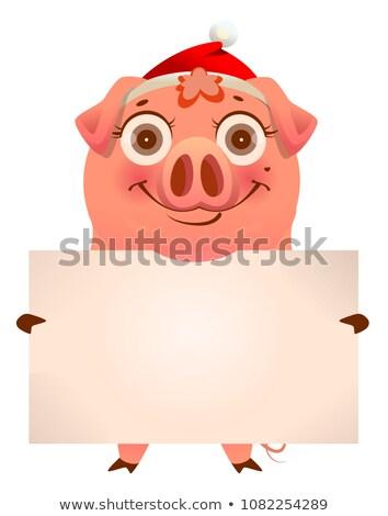 смешные свинья Hat пусто Сток-фото © orensila
