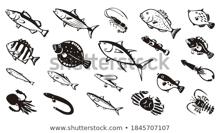 Lobster and Bream Bass Set Vector Illustration Stock photo © robuart