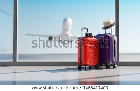 Foto stock: Viaje · vacaciones · sombrero · cámara · pasaporte · avión