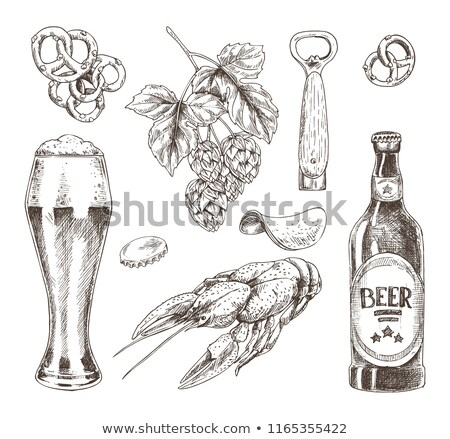 beer food and brunch of hop graphic illustration stock photo © robuart