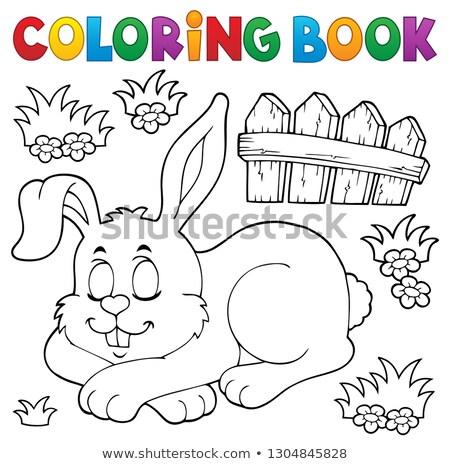 Coloring Book Sleeping Bunny Theme 1 Vector Illustration C Klara