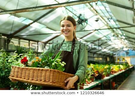 Imagem europeu mulher jardineiro 20s Foto stock © deandrobot