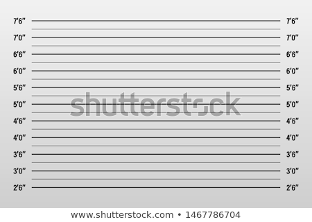 Police lineup or mugshot background. Vector illustration Stock photo © olehsvetiukha