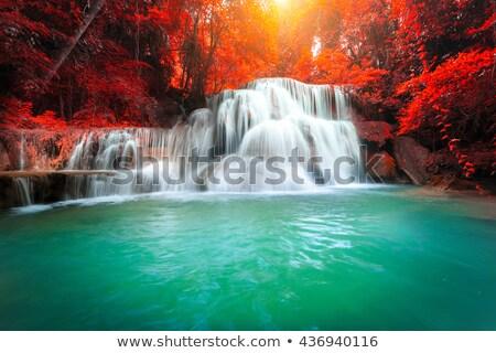 The landscape photo, beautiful waterfall in rainforest Stock photo © galitskaya