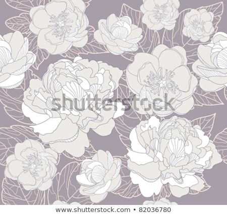 Cover design with floral pattern and round composition. Hand drawn abstract flowers Stock photo © user_10144511
