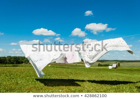 drying laundry line stock photo © simply