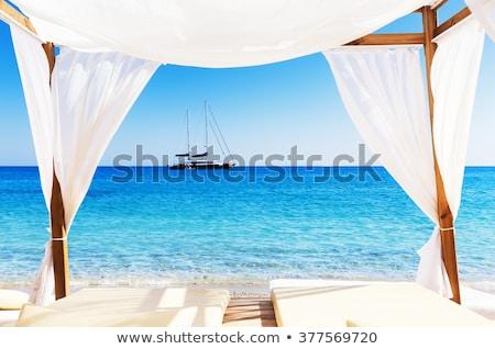 Zdjęcia stock: Masażu · plaży · wektora · młoda · kobieta · kobieta · szczęśliwy