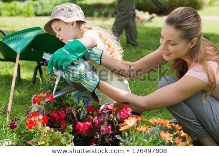 Lánygyermek locsol növények nő virágok sétál Stock fotó © photography33
