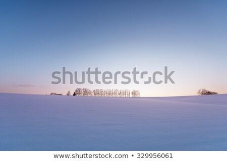 Stock photo: Japanese snow field